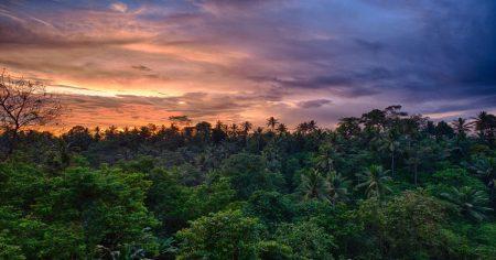Экстравагантные развлечения на Бали