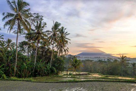 Чем заняться на Бали, когда идет дождь